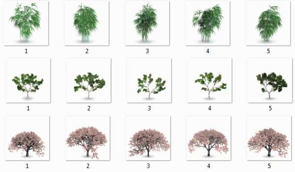مبلمان گیاهی فتوشاپ 1(Tree)