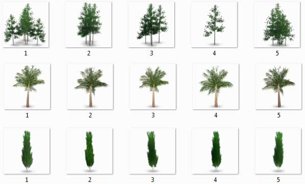 مبلمان گیاهی فتوشاپ 3 (Tree)